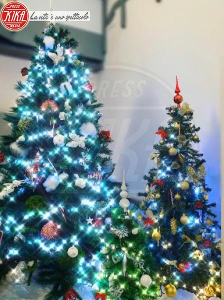 Giorgia Palmas, Filippo Magnini - Hollywood - 09-12-2019 - Natale 2019, gli alberi delle star? Vic Beckham la più originale