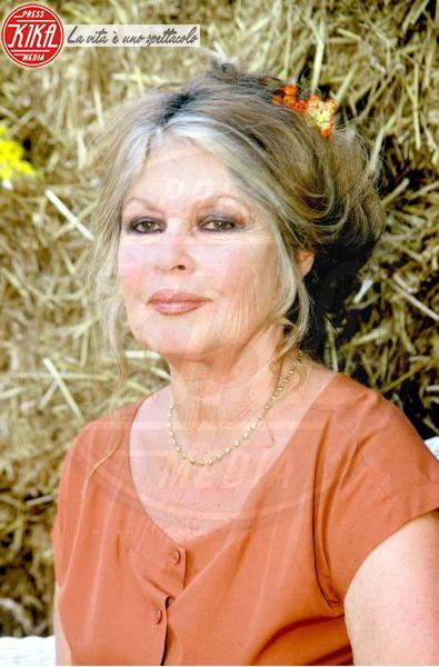 Brigitte Bardot - Parigi - 11-12-2001 - Brigitte Bardot condannata per istigazione odio nei confronti dei mussulmani